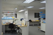 Blue Crane Dental Lab Services